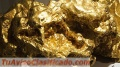 sell-gold-mine-in-colombia-vendo-mina-de-oro-en-colombia-3.jpg